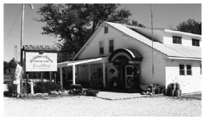 Gobblers Knob Country Store, immediately north of Gobblers Knob Deer Park, 2008. Author's photograph.