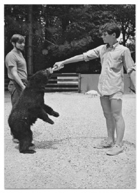Postcard view of Fred (left) and Jeff (right) feeding a young bear.